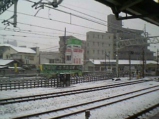 東京で見る雪はこれが、