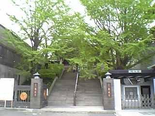 乗蓮寺の門の下から