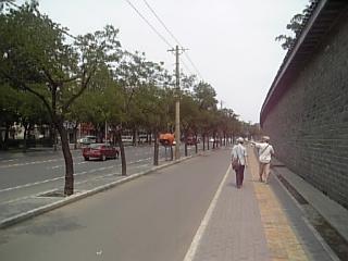 天壇公園横の通り