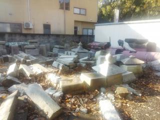 倒壊した石柱たち